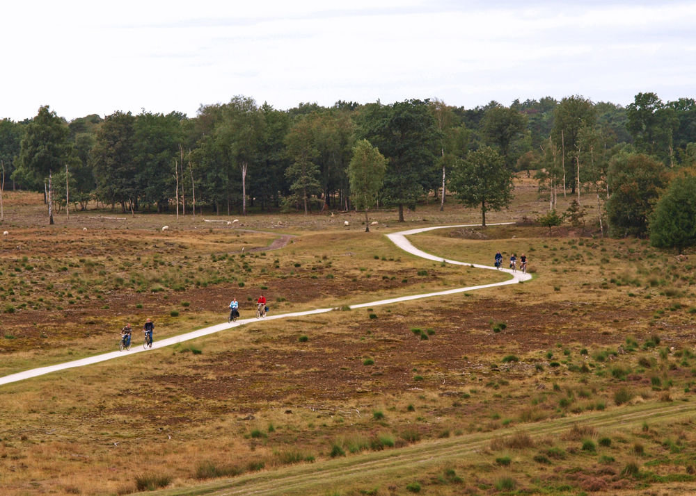 Het Aekingerzand in Appelscha, Nationaal Park Drents-Friese Wold
